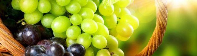 Фото - Як виростити виноград?