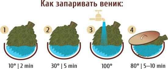 Фото - Як запарити віники для лазні: листяні, трав'яні і хвойні?