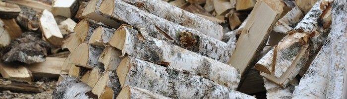 Фото - Які дрова підійдуть для розпалювання печі