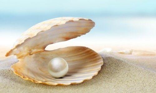 Фото - Якими властивостями володіє перли в мушлі?