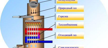 Фото - Який газовий котел вибрати для будинку і які його різновиди?