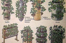 Види ємностей для вертикального вирощування