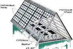 Приклад пристрою теплиці на даху