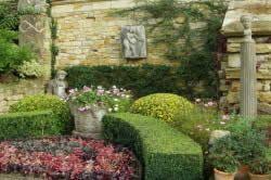 Цвітіння стіна в стилі прованс