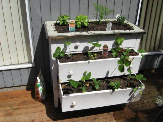 Фото - Багатоярусні грядки на городі: новинки для дачників
