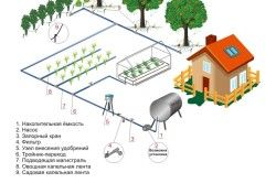 Схема автоматичної системи крапельного поливу