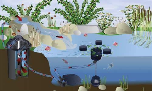 Очищення ставка від мулу і водоростей