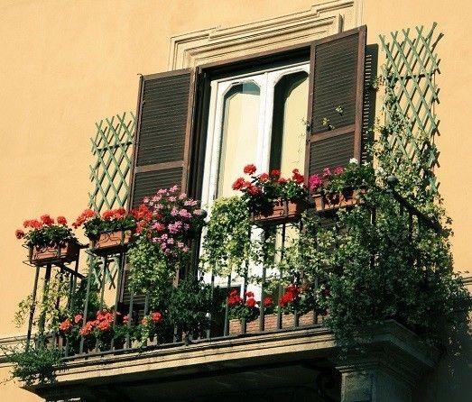 Фото - Оформлення вікон