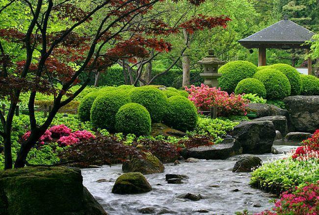 Фото - Оформлення саду в японському стилі