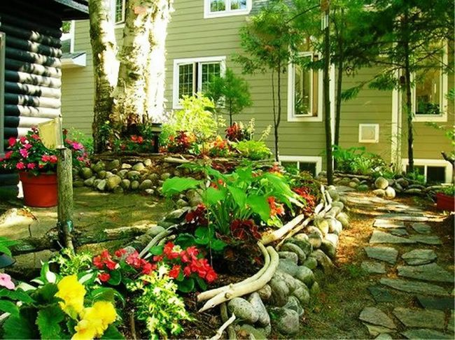 Оформлення садового ділянки квітами та іншими рослинами