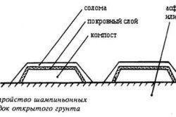 Схема влаштування шарів шампіньйонних грядок.