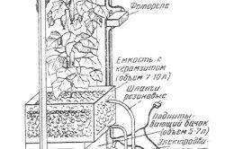 Схема автоматизованого пристрою для вирощування огірків на підвіконні