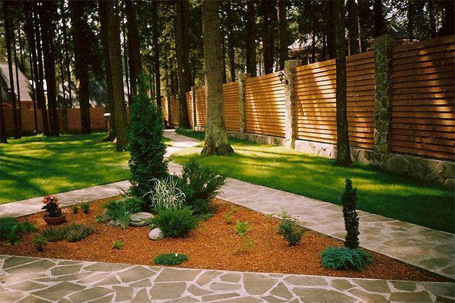 Фото - Особливості лісового ландшафтного дизайну