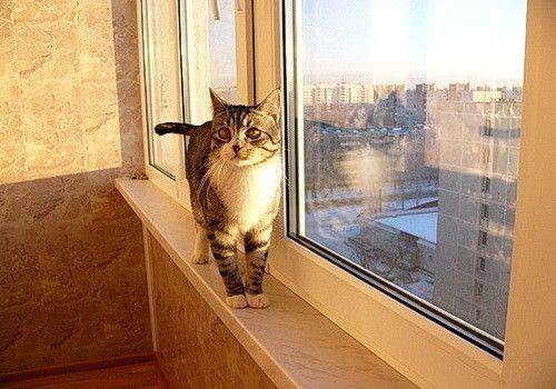 Фото - Оздоблення балкона пробкою своїми руками
