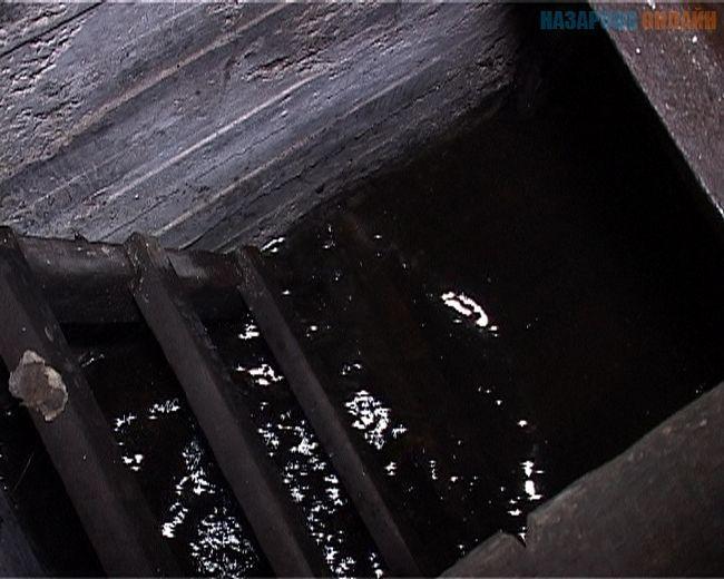 Фото - Відкачування води з погреба