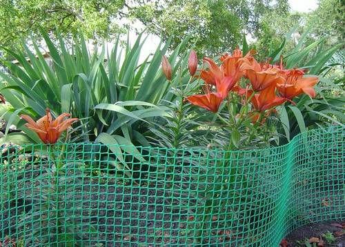 паркан з пластикової сітки