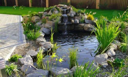 Фото - Популярні способи будівництва ставка в саду