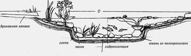 Фото - Правила розведення риби в штучно створеному водоймі