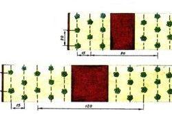 Схеми посадки полуниці