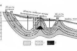 Схема будови геологічних порід на місці виявлення нафти