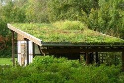 проект будинку з плоским дахом
