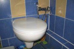 Гігієнічний душ, що розміщується на стіні.