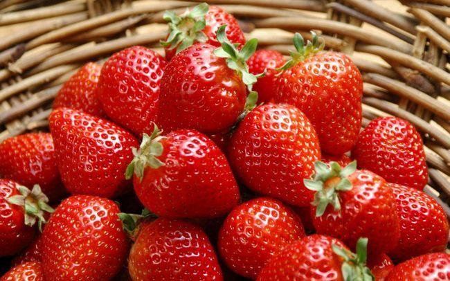 урожай полуниці