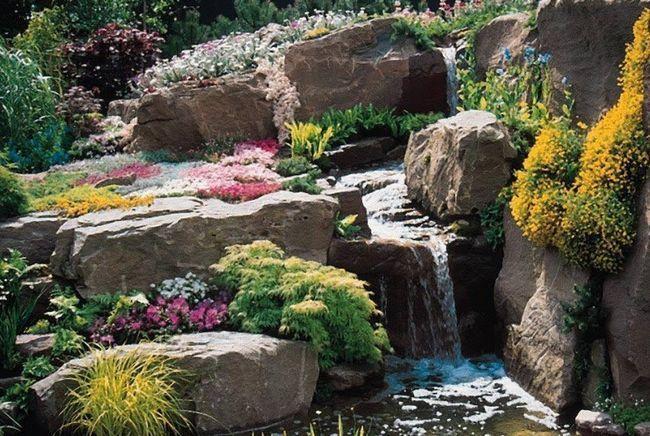 Камянистий сад на ділянці