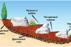 Покрокова інструкція по створенню альпійської гірки