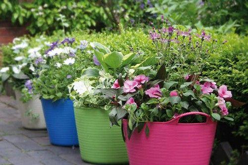 Незвичайні садові горщики для квітів