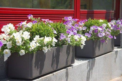 Вуличні контейнери для квітів