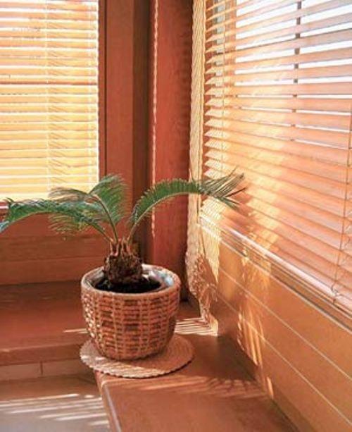 Бамбукові жалюзі фото