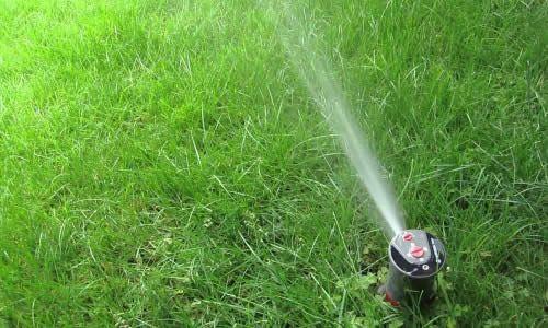 Система поливу газону: створення та експлуатація