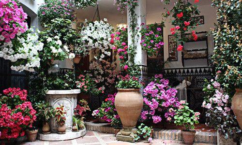 Фото - Сучасні квіткові кашпо для модного балкончики