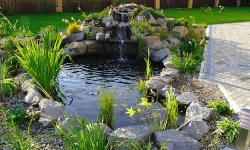 Фото - Створюємо казковий сад