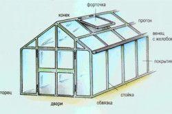 Схема пристрою теплиці для вирощування ананаса