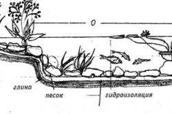 Будівництво штучної водойми своїми руками