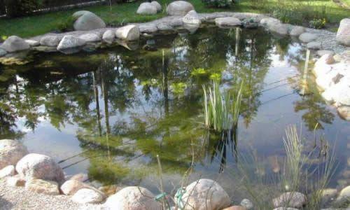 Фото - Будівництво водойми на ділянці своїми руками