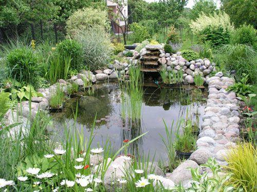 Фото - Технологія очищення ставка і дна водойми