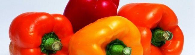Фото - Технологія вирощування солодкого перцю на своєму городі