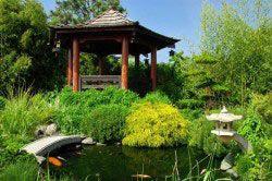 Сад в японському стилі