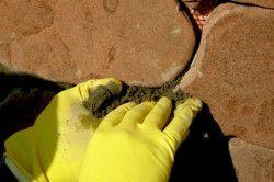 У міру того як укладаєте плитку, потрібно ставити спеціальні розпірки з дерева, для того щоб у тротуару були шви.