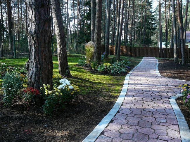 Фото - Пристрій садових доріжок з бетону