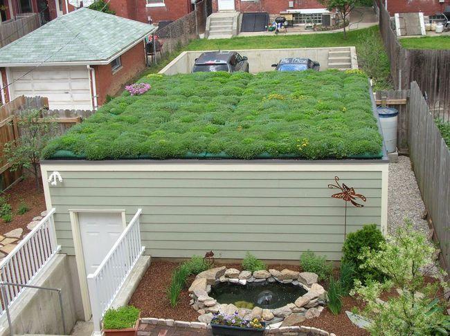 Приклад зеленої покрівлі