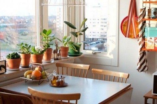 красиві маленькі кухні дизайн фото