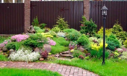 Фото - Ваш сад: які рослини посадити?