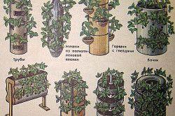 Схема вертикального вирощування полуниці