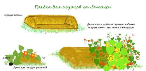 Все про облаштування саду