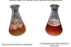 Застосування живих бактерій для вигрібної ями