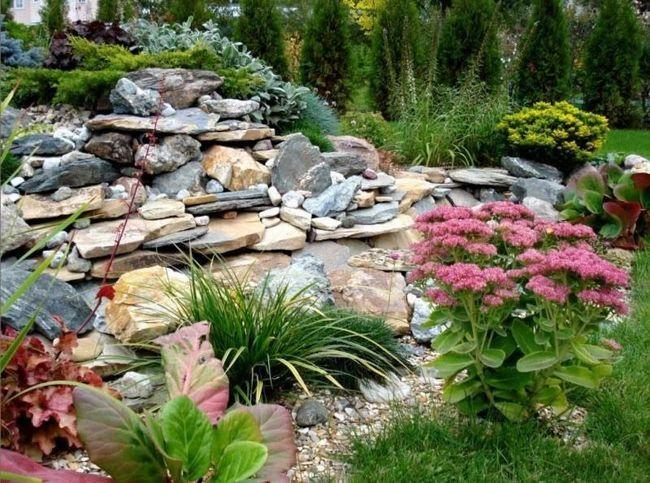 Фото - Вибір рослин для альпінарію